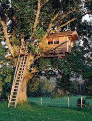 روش و مراحل ساخت آلاچیق چوبی درختی,چگونه کلبه درختی بسازیم