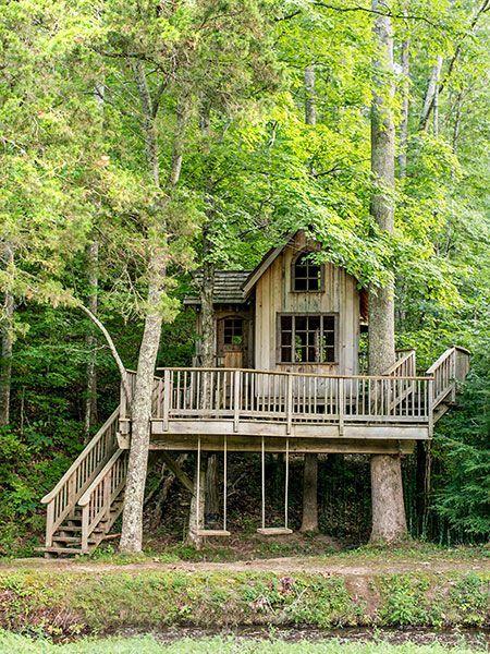 بهترین مدل های خانه درختی