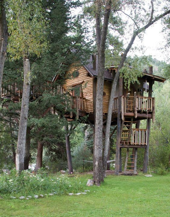 سازنده برای خانه درختی