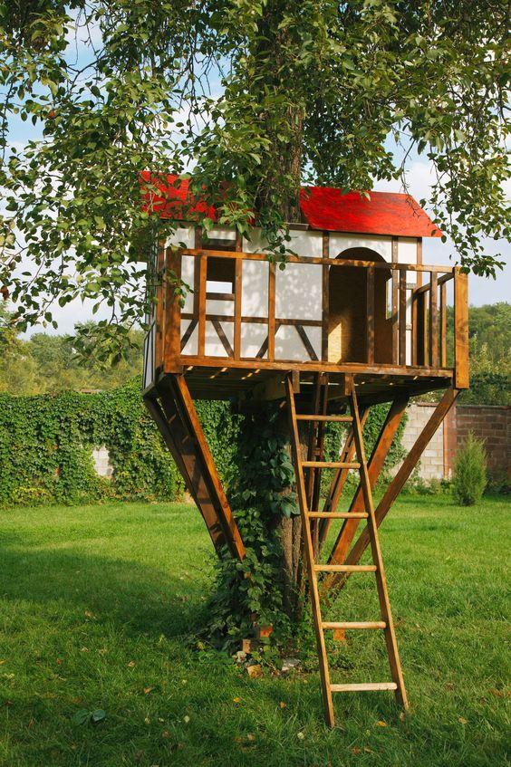 مرکز ساخت و طراحی خانه درختی