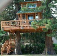 7 مدل خانه درختی
